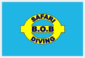 Safari BOB Diving
